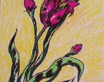 Lily Blooms   ACEO original