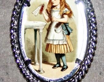 Drink Me Wonderland Alice Frame Pendant