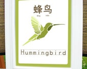 Hummingbird Print with Chinese and English Name (Solo), 8 X 10