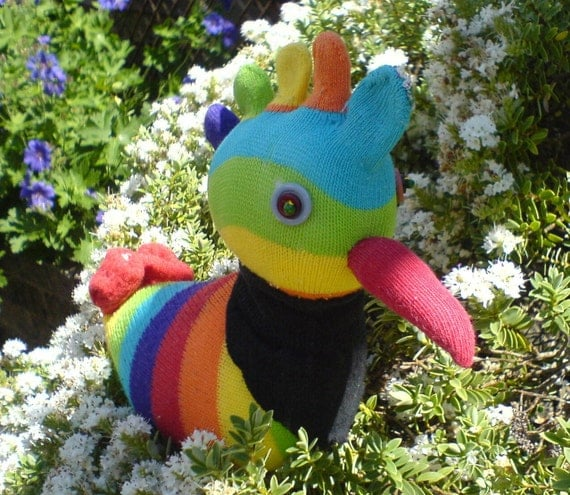 Rainbow sock chicken