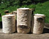 Birch Candle Holder set of 3 number 33