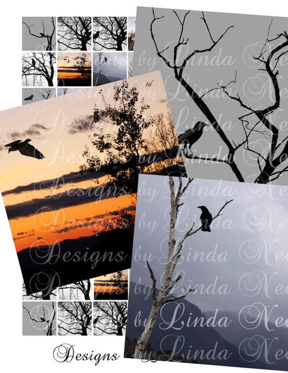 Instant Download - GOTHIC Birds PHOTOGRAPH (1 x 1 Inch Square) Digital Collage Sheet  SALE - glass wood tiles printable sticker magnet