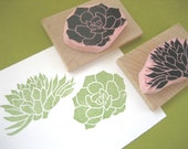 Succulent Rubber Stamps, Hand Carved Succulent Plant Stamp