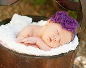 Eggplant Purple Shabby Chic Frayed Rosettes on Purple Stretch Headband Infants, Babies or Adults