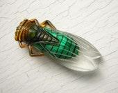 Medium 60's Lucky French Cicada Pin Brooch Emerald Green Vintage