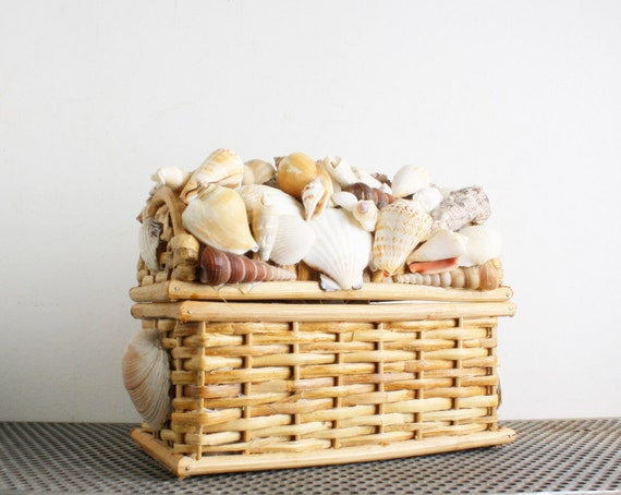 Vintage Rattan Trunk of Shells - Instant Collection