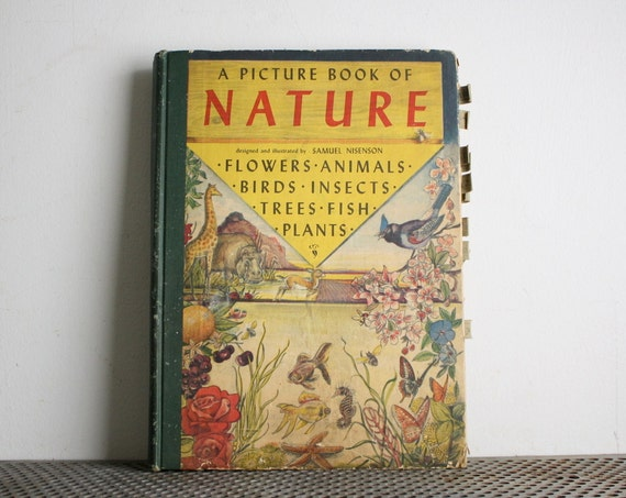 Vintage Book - A Picture Book of Nature
