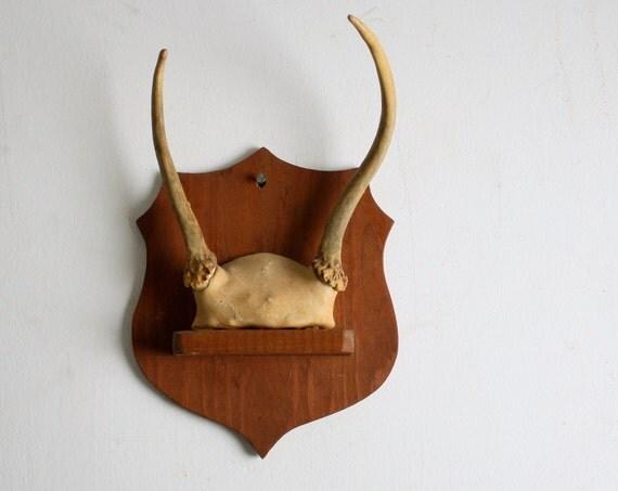 Tiny Vintage Suede-wrapped Mounted Deer Antlers