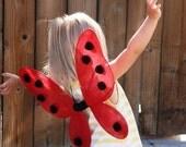 2 QT Ladybug Wings - Medium