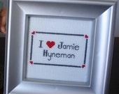 I Love Jamie Hyneman cross stitch