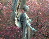 Spring Angel - 8 x12 - Fine Art Photograph - Bath, United Kingdom