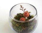 Faux Terrarium with Mushrooms - Forest Scene
