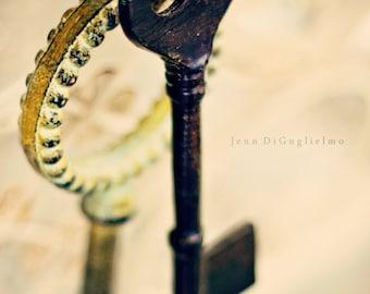 Fine art Photography, Skeleton Keys, Bronze, Aged, set of 2 keys still life photograph