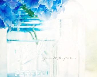 Summer garden of blue.  Fine art photography - 5 x 7 print