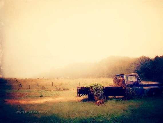 Items similar to Vintage Fine Art Photography, Classic ...