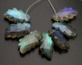 Glowing Blue Fire Labradorite Faceted Leaf Shape Beads--8 Beads