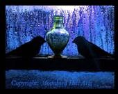 Winter Moon Bluebirds, 5x7, By Linda Woods