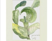 Pen and Ink Botanical  Original Illustration with Watercolor 'Jack in the Pulpit'