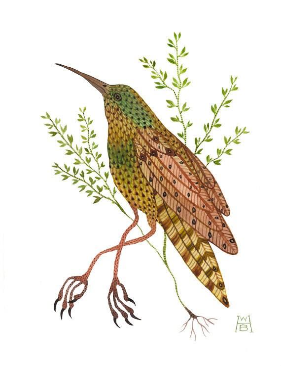 RESERVED Time Stood Still V bird art original watercolor painting