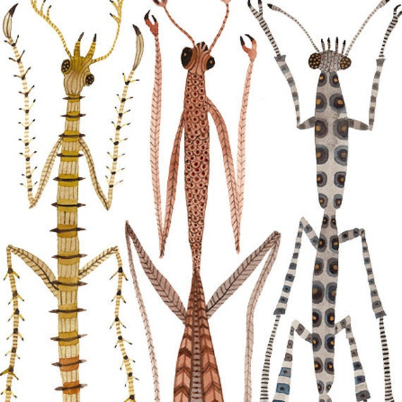 Walking Sticks and Mantids insect specimens original watercolor painting