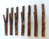 Natural Tree Hooks -- Set of 7