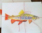 Brook Trout Notecards--Set of ten with envelopes