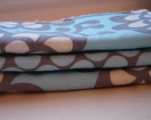 Amy Butler Wall Flower and Full Moon Sky Wash Cloths