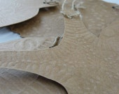 Embossed paper fossil ornaments or gift tags