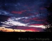 Sun setting over Delaware - 8x10 print