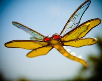 Double Winged Damselfly Dragonfly Brilliant Yellow & Iridescent Wings