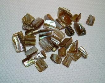 Natural Shell Chip Beads (Qty 23) - B699