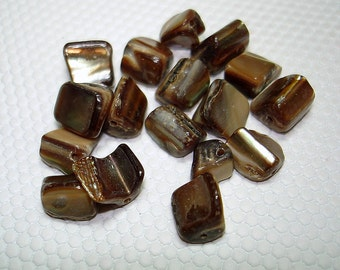 Brown Shell Nugget Beads (Qty 17) - B1162