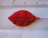 Vintage Medium Red Velvet Leaves (6)