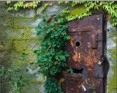 Rusty Door, 8x10 Print