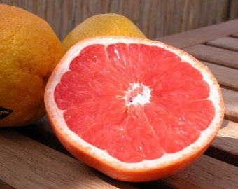 Red Ruby Grapefruit Fragrance Oil Low Shipping