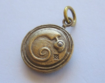 snake pendant steampunk EMBRYO DISC with skull reverse side bronze and stainless steel on long gunmetal ball chain