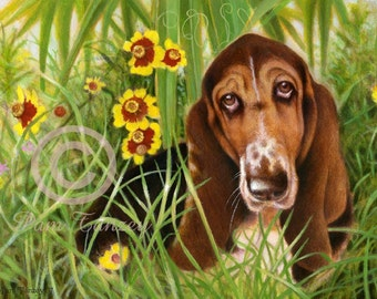 Basset Hound art Signed Print Wildflowers n free card