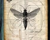 Divine Design V - Graphic Original - Wasp/Hornet/Bee