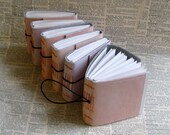 6 pretty in pink blank little pocket bulk journal set by bluetoad journals of tremundo