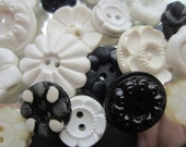Vintage Buttons - Cottage chic mix of  black and white, old and sweet - 18 total (1522)