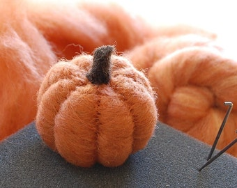 Pumpkin Needle Felting Kit - Thanksgiving Kit - Beginner - DIY Craft Kit - DIY Kit - Starter Kit - Thanksgiving Decor - Felting Wool