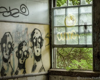 Old Window, Lost Souls - Abandoned Asylum - Green Room - Fine Art Photography, Urban Exploration, Signed Print, Free Shipping