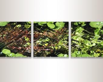 Triptych Art, Water Art, Green Art, Nature Photography, Water Ripples, 8x8, 10x10, 12x12, Murray Bolesta