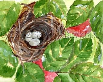 Bird Nest Watercolor Painting