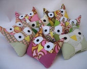 11 owls for egzeiders