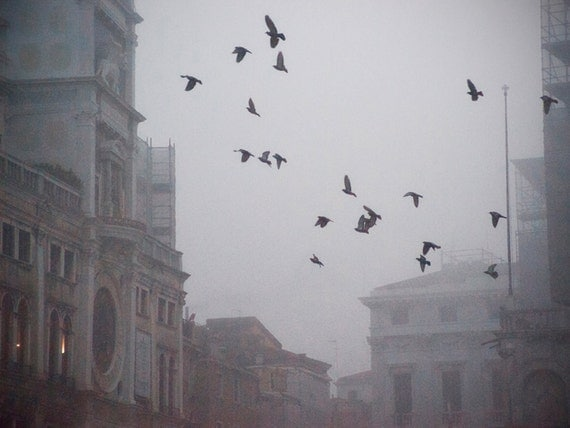 Before Dawn, 8x6 fine art print, original photo, misty morning scene in Piazza San Marco, Venice
