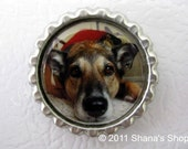 Custom Photo Bottle Cap Magnet - Made with Your Photo by Shana's Shop on Etsy