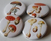 Set of 4 Mushroom Buttons/Badges