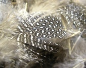 Packs of Feathers - RESERVED LISTING FOR BANGLEZBEADZ