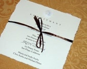 Sand Dollar Invitations with raffia tie-perfect for any event